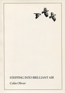Stepping Into Brilliant Air
